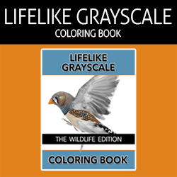 The Lifelike Wildlife Grayscale Coloring Book Affiliate Banner - 250x250