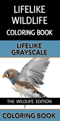 The Lifelike Wildlife Grayscale Coloring Book Affiliate Banner - 120x240
